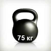 Весы 75 кг