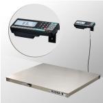 Весы нерж 4D-PM.S-3-3000-RA с регистрацией товароучетных операций