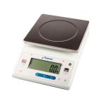 Лабораторные весы DL-10001 платформа 200х200 мм