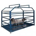 Весы «Живой вес» 2000х1000 мм для взвешивания мелких животных